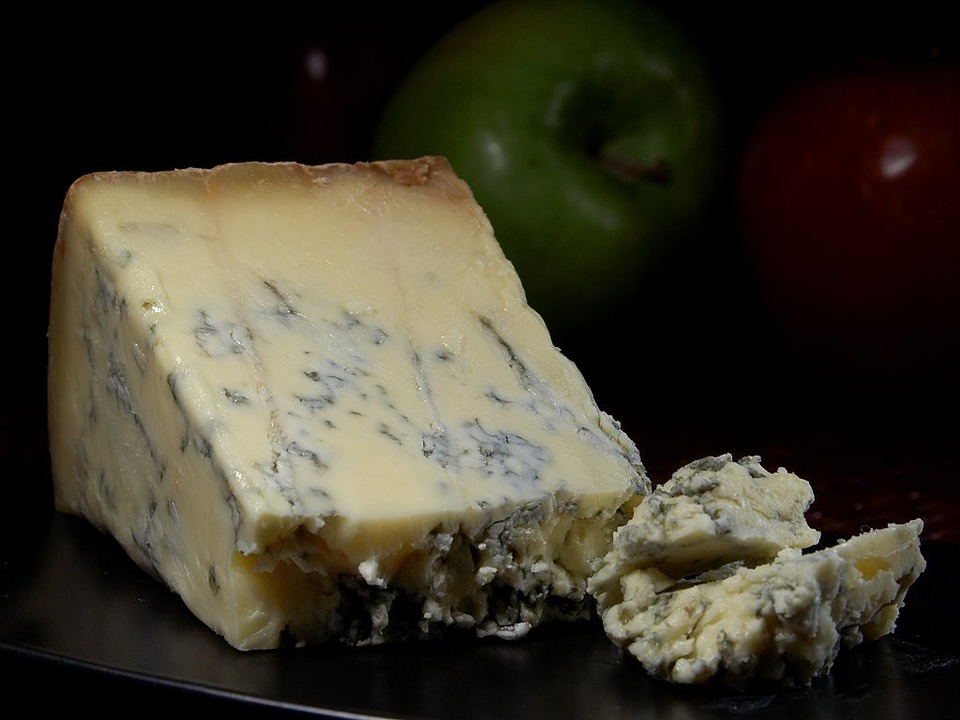 Stilton cheese with blue mold
